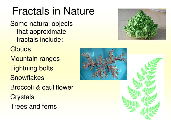 Fractals in Nature