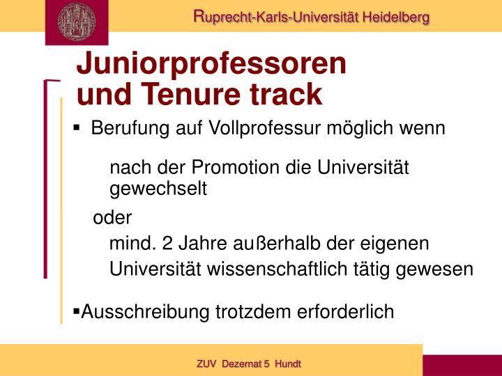 Juniorprofessoren
