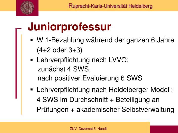 Juniorprofessur