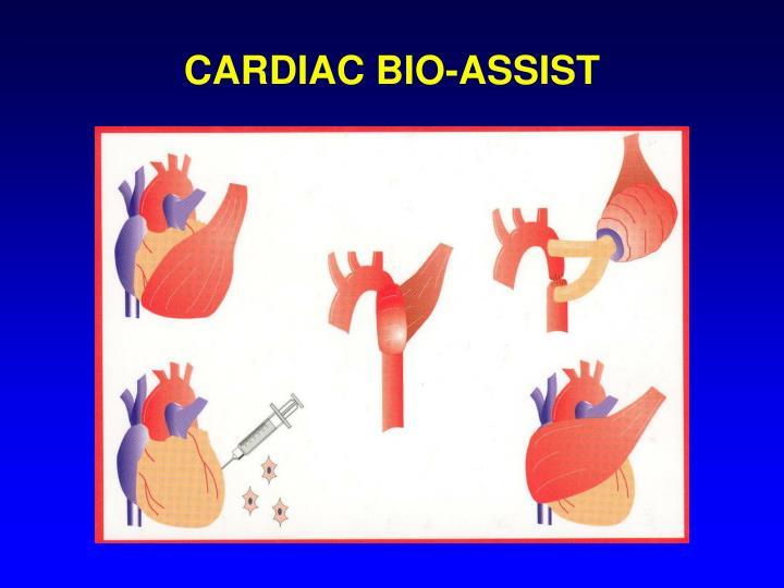 CARDIAC BIO-ASSIST