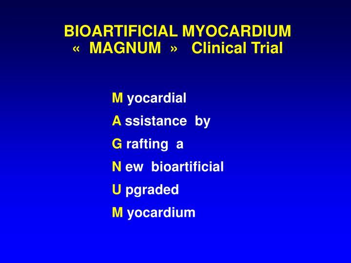 BIOARTIFICIAL MYOCARDIUM