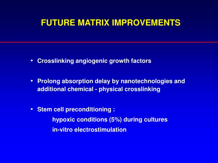 FUTURE MATRIX IMPROVEMENTS