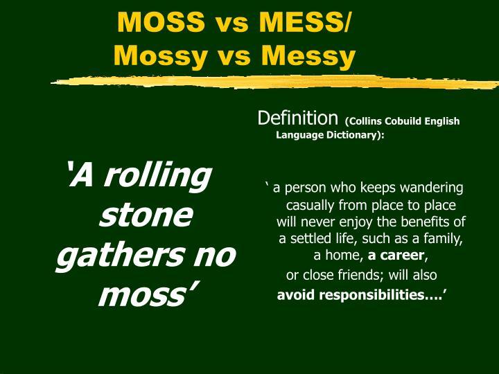 'A rolling stone gathers no moss'