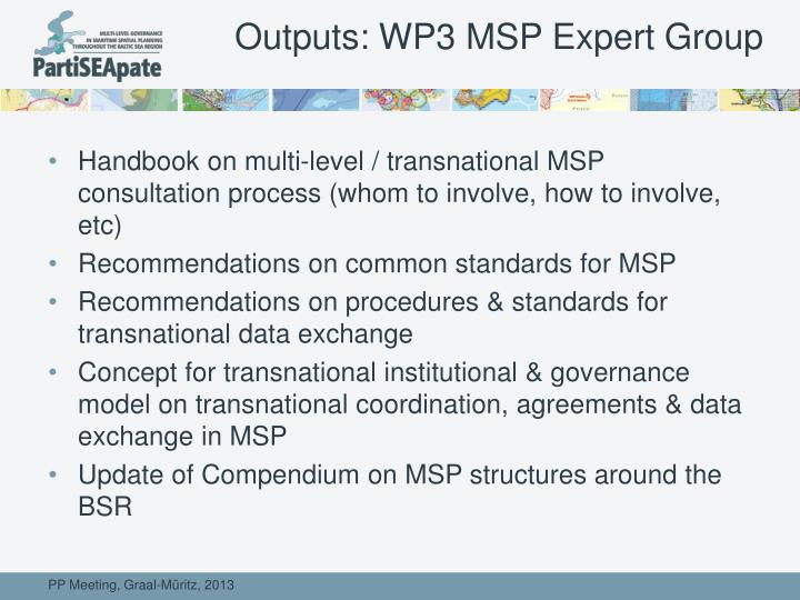 Outputs: WP3 MSP Expert Group