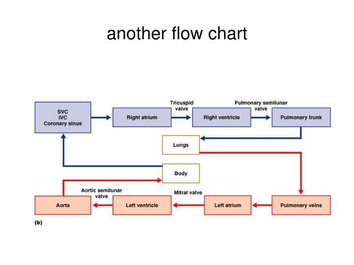 another flow chart