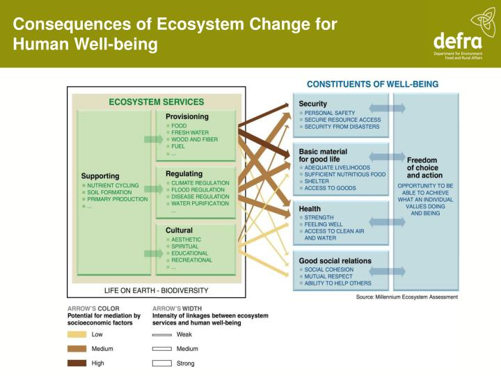 Consequences of Ecosystem Change for Human Well-being
