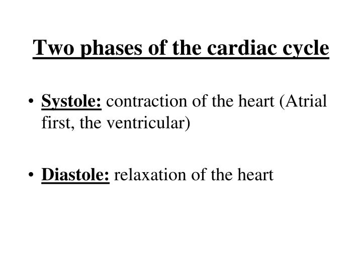 Two phases of the cardiac cycle