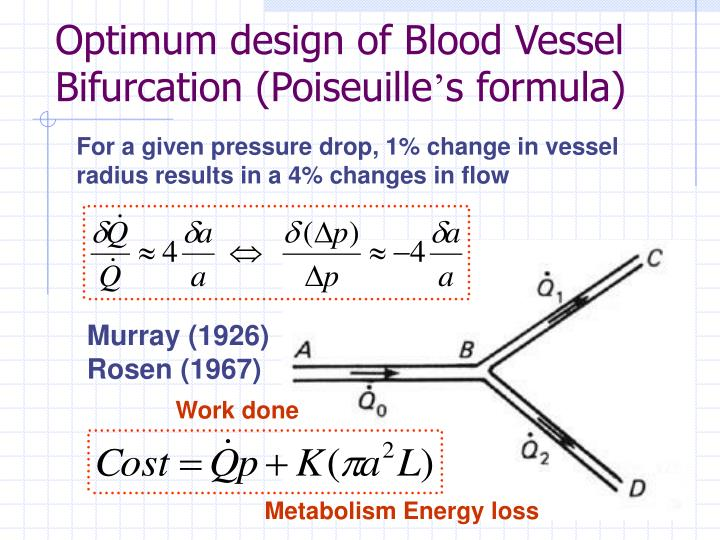 Optimum design of Blood Vessel Bifurcation (Poiseuille