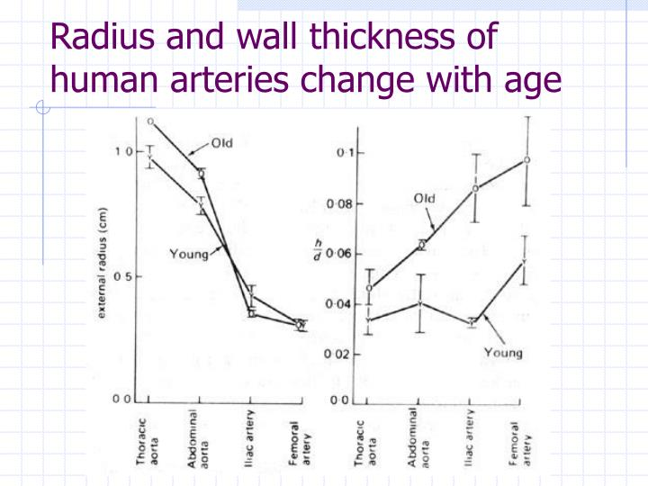 Radius and wall thickness of human arteries change with age