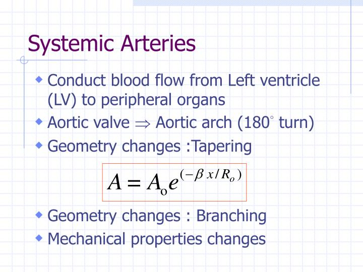 Systemic arteries
