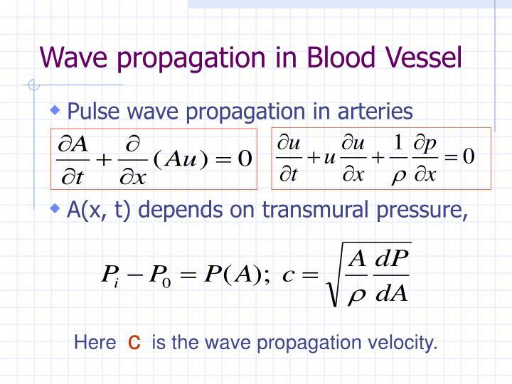 Wave propagation in Blood Vessel