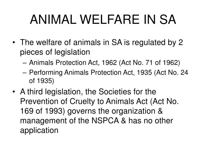 ANIMAL WELFARE IN SA