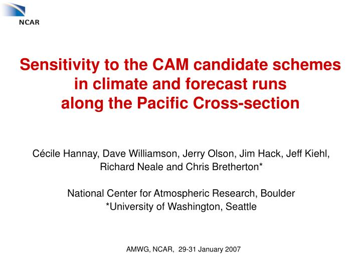 Sensitivity to the CAM candidate schemes