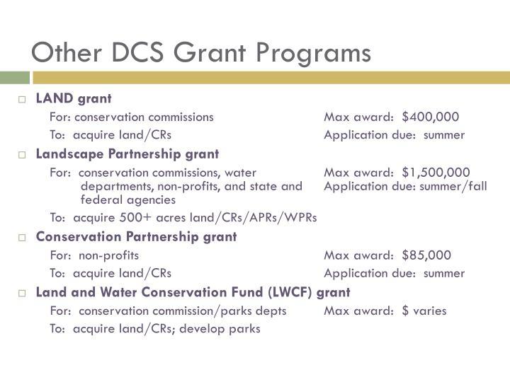 Other DCS Grant Programs