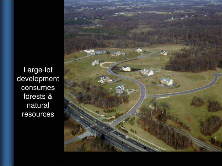 Large-lot development consumes forests & natural resources