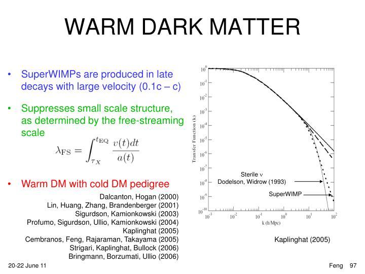 WARM DARK MATTER