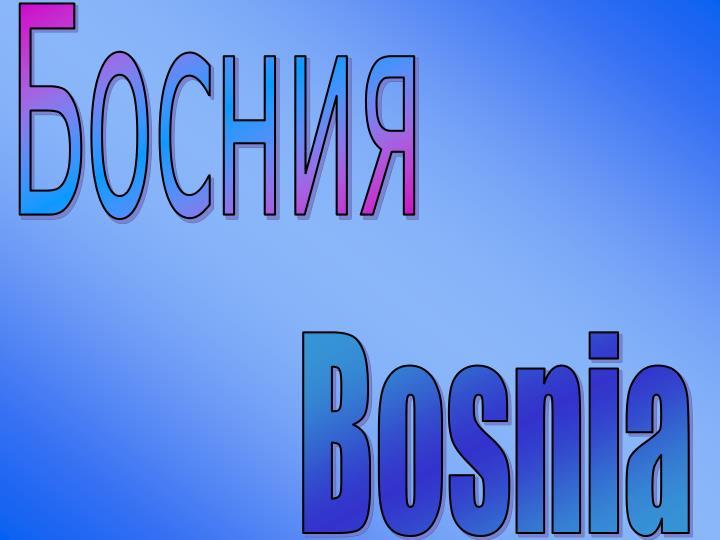 Босния