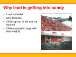 why lead is getting into candy