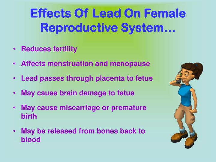 Effects Of Lead On Female Reproductive System…