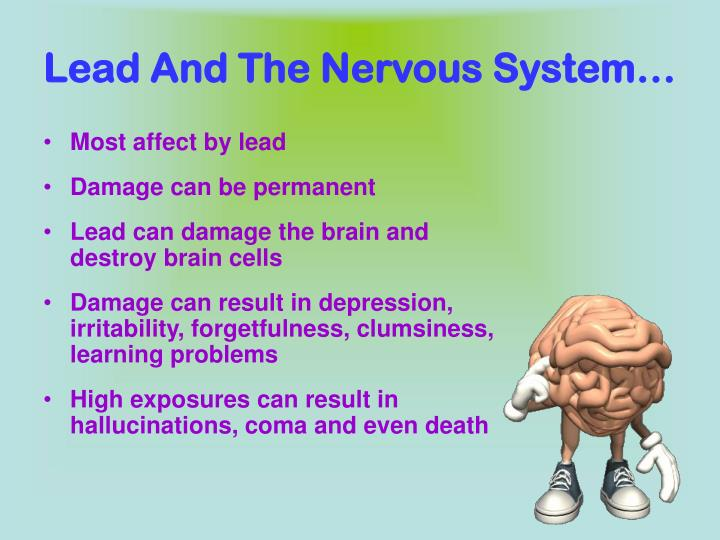 Lead And The Nervous System…