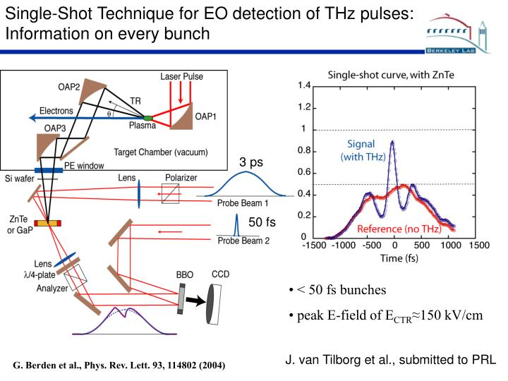 Single-Shot Technique for EO detection of THz pulses: