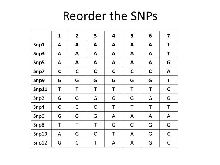 Reorder the SNPs