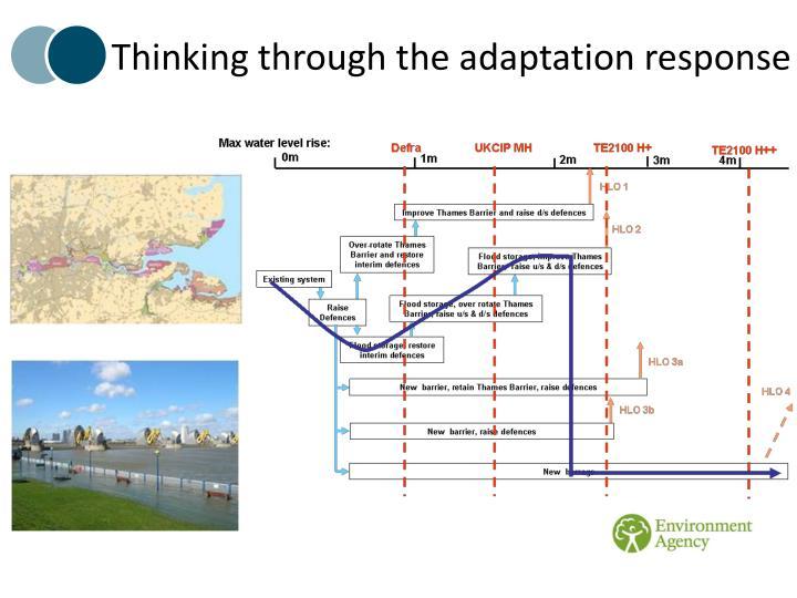 Thinking through the adaptation response