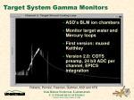 target system gamma monitors