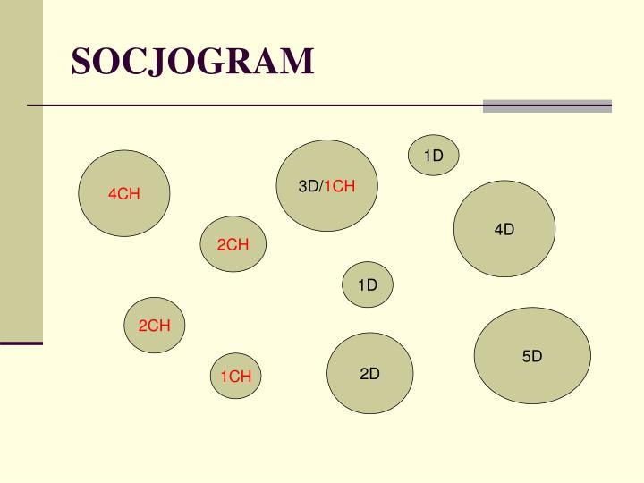 SOCJOGRAM