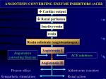 angiotesin converting enzyme inhibitors acei