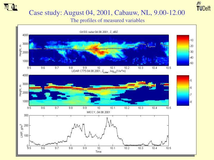 Case study: August 04, 2001, Cabauw, NL, 9.00-12.00