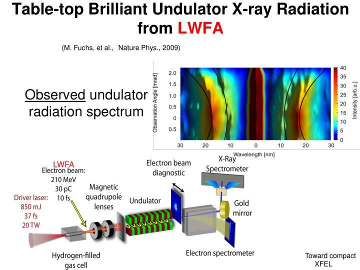 Table-top Brilliant Undulator X-ray Radiation