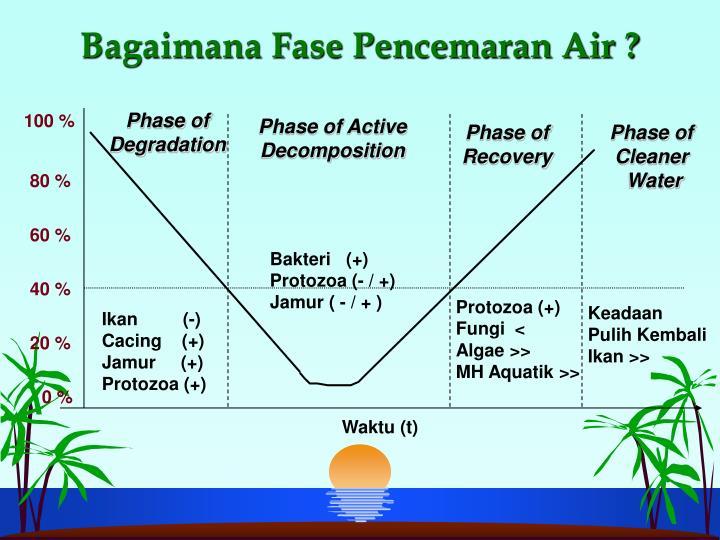 Bagaimana Fase Pencemaran Air ?