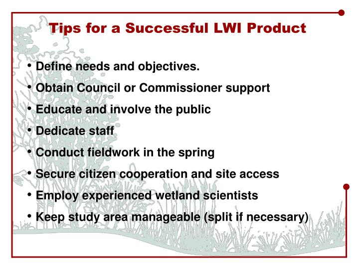 Tips for a Successful LWI Product