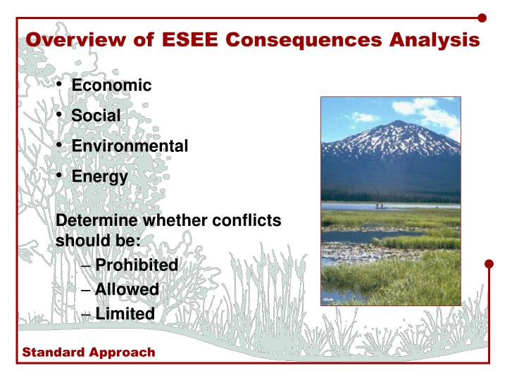 Overview of ESEE Consequences Analysis