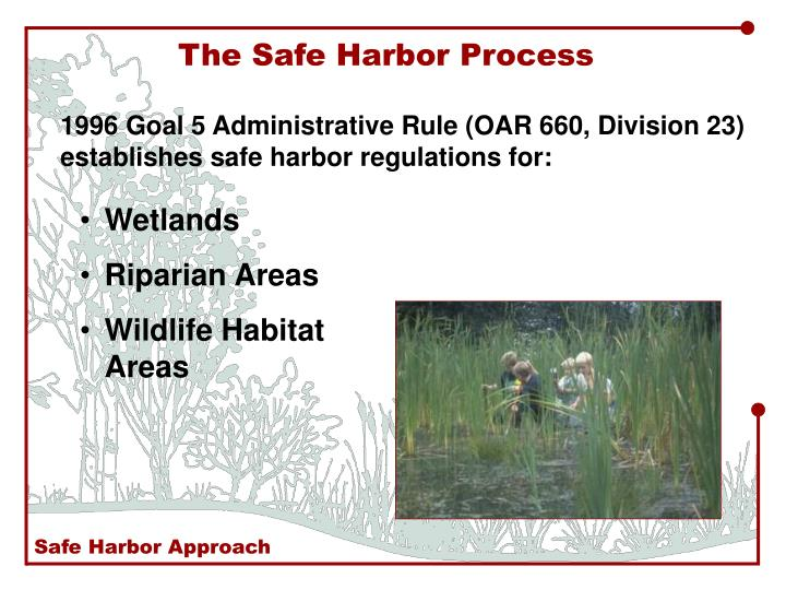 The Safe Harbor Process