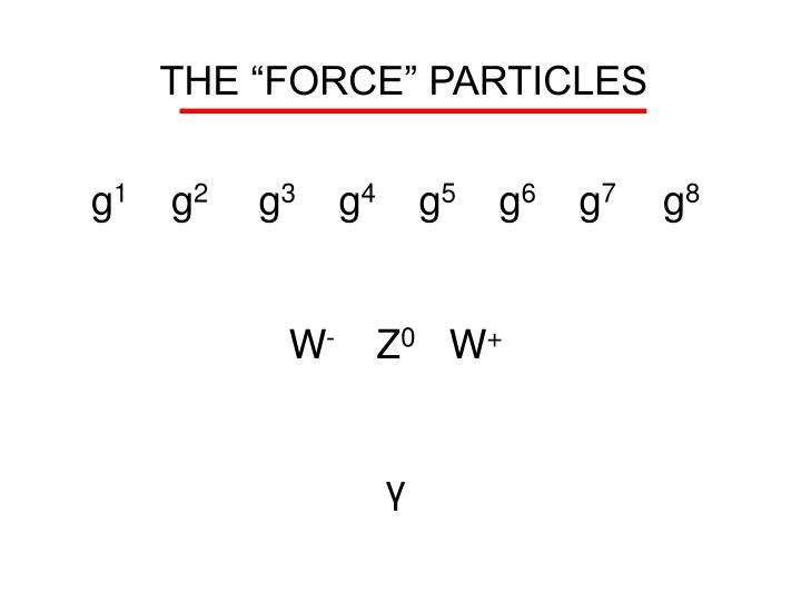 """THE """"FORCE"""" PARTICLES"""