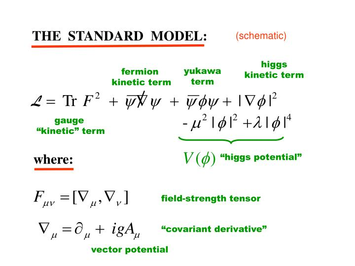 THE  STANDARD  MODEL: