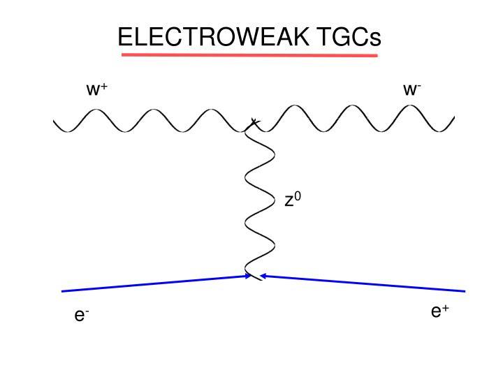 ELECTROWEAK TGCs