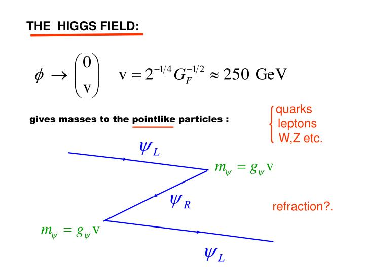 THE  HIGGS FIELD: