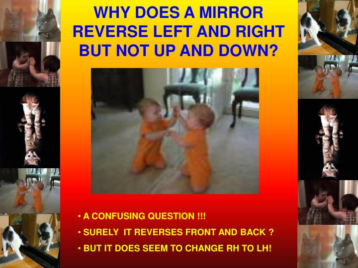 WHY DOES A MIRROR