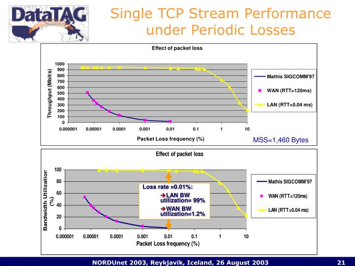 Single TCP Stream Performance under Periodic Losses