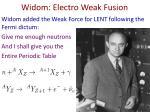 widom electro weak fusion