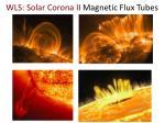 wls solar corona i i magnetic flux tubes