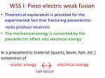 wss i piezo electric weak fusion