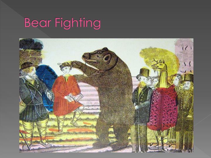 Bear Fighting