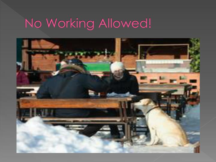 No Working Allowed!