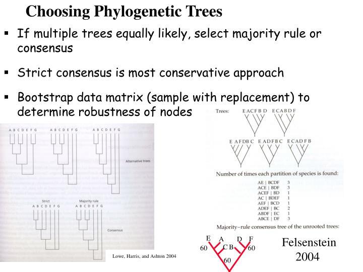 Choosing Phylogenetic Trees