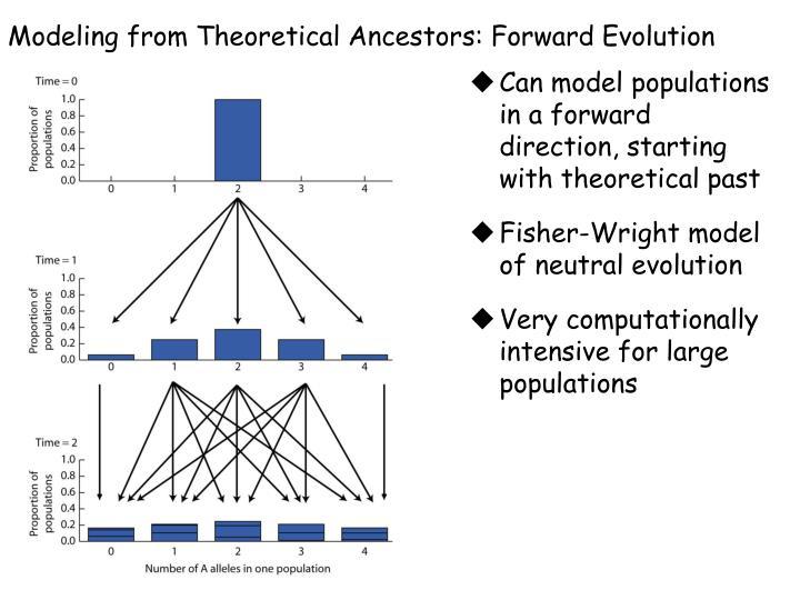 Modeling from Theoretical Ancestors: Forward Evolution