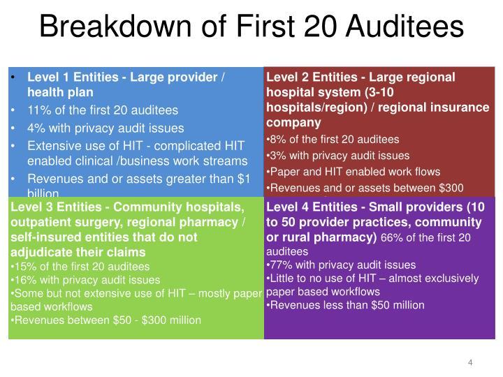 Breakdown of First 20 Auditees